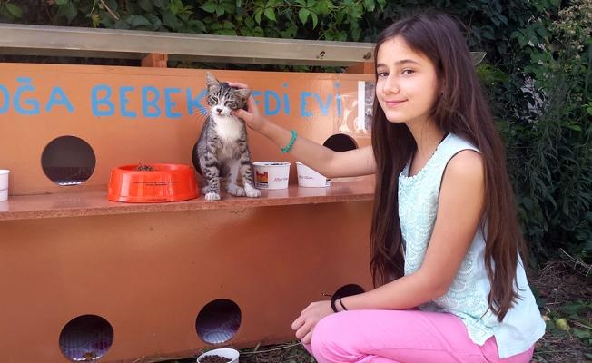11 Yaşında Sokaklarda Keman Çalarak Kedi Evi Yaptırdı