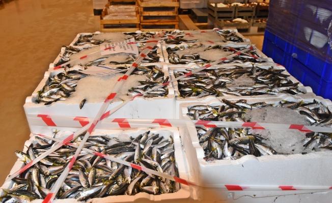 21 ton balığa el konuldu