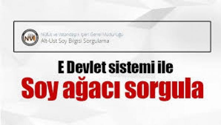 e-Devlet soy ağacı alt üst soy sorgulama Nüfus ve Vatandaşlık İşleri Genel Müdürlüğü sayfası