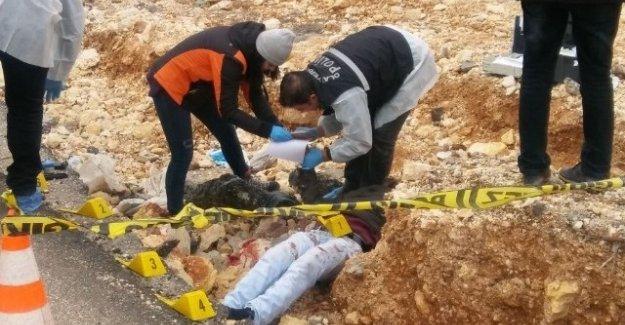 20 yaşındaki gencin cesedi zeytinlik alanda bulundu