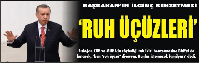 Erdoğan'ın benzetmesi BDP'yi kızdıracak