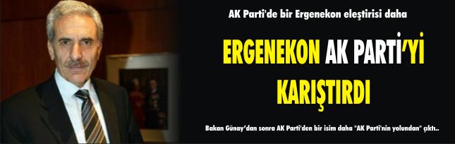 AK Parti'de bir Ergenekon eleştirisi daha