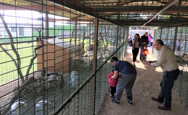 İstanbulluların Yeni Uğrak Yeri Yakacık Havuzlu Park