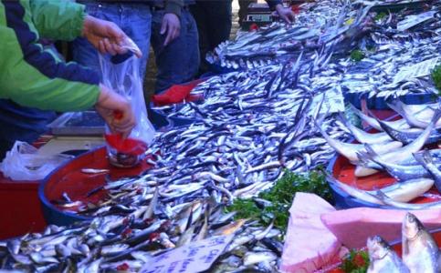Bakanlıktan zehirli balık açıklaması