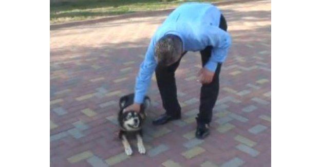 Belediye Başkanı sevdiği köpeğin saldırısına uğradı