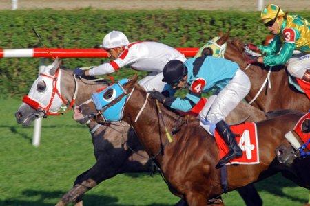 İstanbul'da koşulan at yarışları sonucu oluşan iki ayrı altılı ganyan,