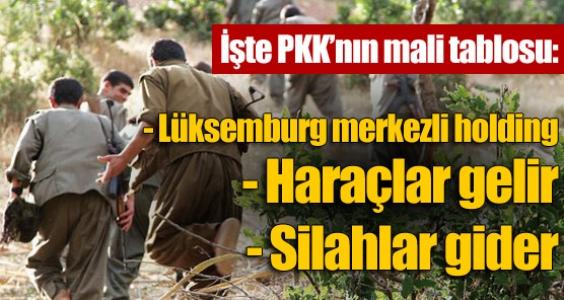 İşte PKK'nın mali tablosu !