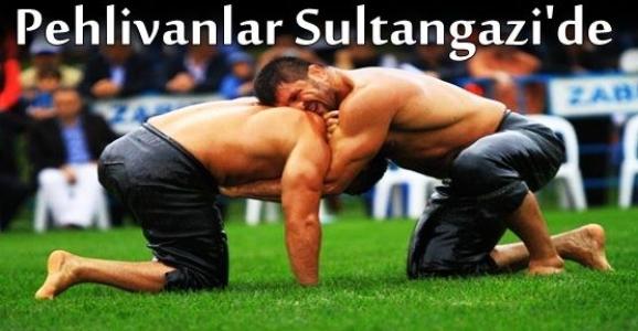 Sultangazi 2. Geleneksel Yağlı Güreşleri