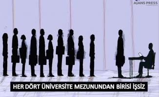 Her dört üniversite mezunundan biri işsiz