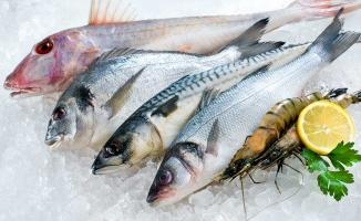 Hangi ay,hangi balık yenmeli?