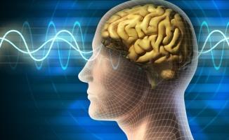 Sağlıklı Bir Beyin İçin 8 Altın Kural