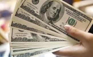 Yatırımcısına Bir Yılda Yüzde 75 Kar Ettirdi