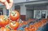 Ekim ayında en çok domates zamlandı