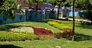 Maltepe'nin parkları çiçeklendi