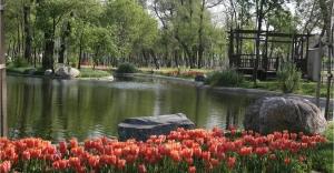 Park Cenneti Kağıthane