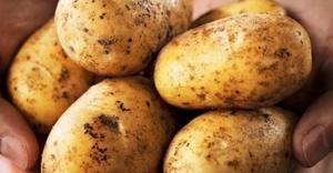 Patates zammından 'stok' çıktı