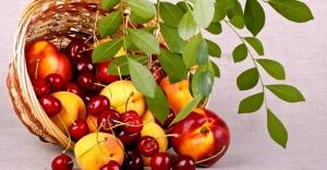 Yaz Meyveleri Tüketimine...