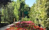 Kurban bayramında mezar ziyaretine çiçek ikramı
