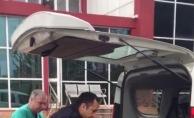 Esenyurt'ta yaralı martının imdadına zabıta ekipleri yetişti