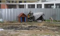 Esenyurt Belediyesi'nden sokak hayvanlarına sıcak yuva