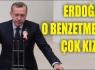 Erdoğan 'o benzerliğe' fena çıkıştı
