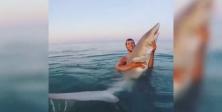 Köpekbalığını kucağına alıp selfie yaptı