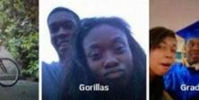 Google'dan siyah çifte 'goril' özrü