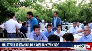 MALATYALILAR İSTANBUL'DA KAYISI BAHÇESİNDE