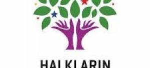 HDP'den Saray Kararı