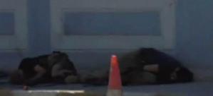 Tunceli'de karakola saldırı! 1 şehit