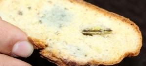 Yediği ekmekten maket bıçağı çıktı!