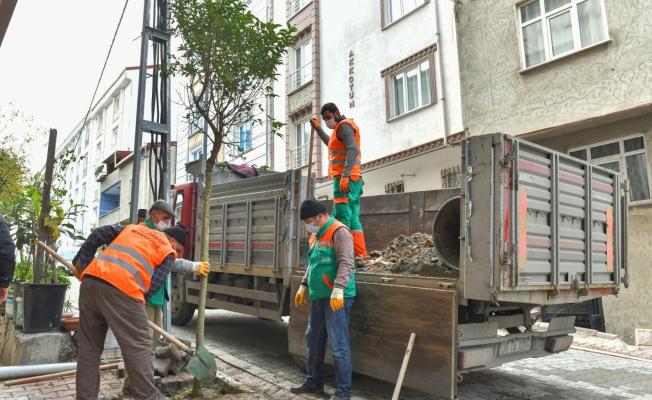 Esenyurt'ta Ağaçlandırma Çalışmaları Devam Ediyor