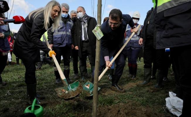 İmamoğlu Ve Eşi 8 Mart Hatıra Ormanında Ağaç Dikti