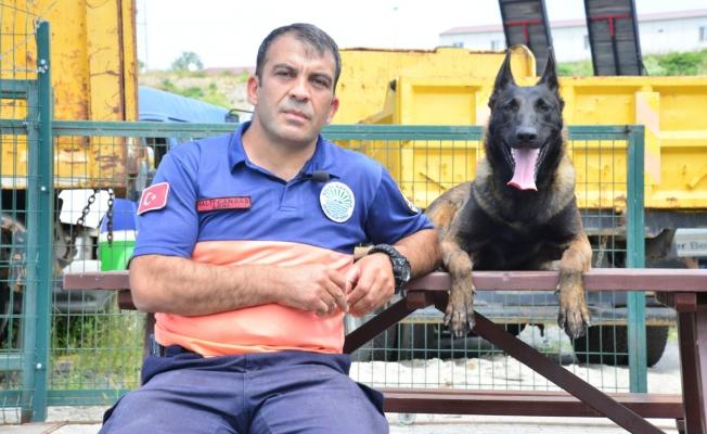 Sarıyer'in Arama Kurtarma Köpeği Şilan Afetlere Hazırlanıyor
