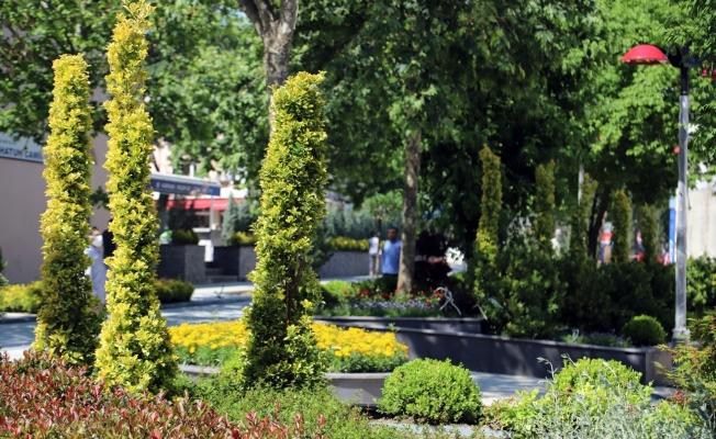 İstanbul'un Merkezine 24 Bin M2'Lik Botanik Meydan