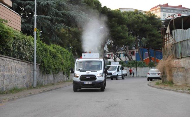 Kartal'da Her Gün 7 Mahalle, Sivrisinek ve Haşerelere Karşı İlaçlanıyor