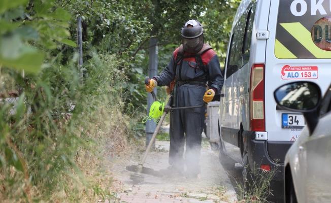 Kartal'da Yabani Otlar Biçilerek Temizlik Çalışmaları Yapılıyor