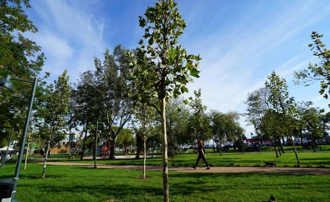 Kartal'da Baştan Aşağı Yenilenen Parka İmamoğlu Ziyareti