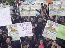 MARDİN GAP GENÇLİK FESTİVALİ  PROTESTO İLE BAŞLADI
