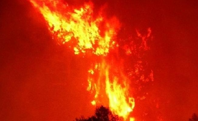 İtfaiyenin Yangına Ortalama Varış Süresi 5 Dakika 29 Saniye