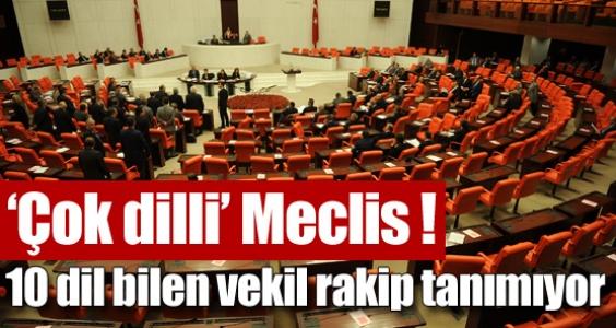 Çok dilli Meclis !