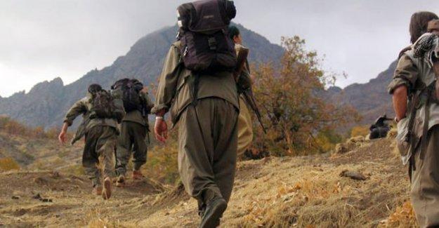 PKK Sağlık Ekibi Kaçırıp Terörist Tedavi Ettirdi!