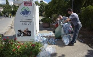 Sokak Hayvanlarına Yönelik Örnek Çalışmalar Hayvan Dostu Belediyecilik