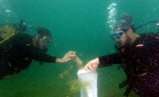 İnsansız Tekne 'Doris' Deniz Üstünden, Balıkadamlar Denizaltından Çöp Topladı