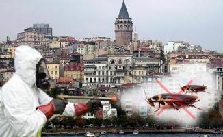 İstanbul'da Böceklere %100 Çözüm