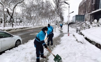 Beylikdüzü Belediyesi'nin Karla Mücadele Çalışmaları Aralıksız Devam Ediyor
