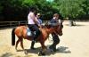 Sarıyer Belediyesi'nden engellilere atla terapi desteği…